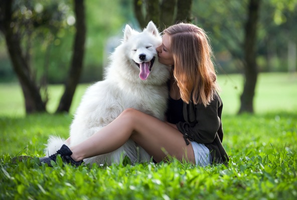 6 Ways to Spend Quality Time Outside with Your Dog from Ormond Beach Vets